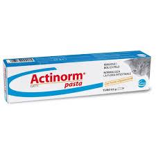 ACTINORM PASTA GATTI Image