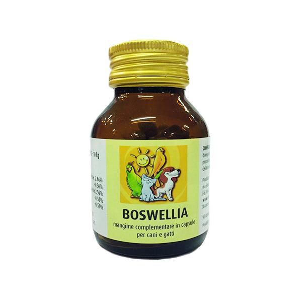 Boswellia 50 cp – Greenvet Image