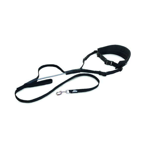 Jogging belt – Julius k-9 Image