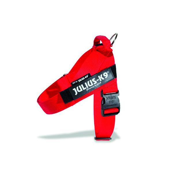 Pettorina idc – belt harnesses – Julius k-9 Image